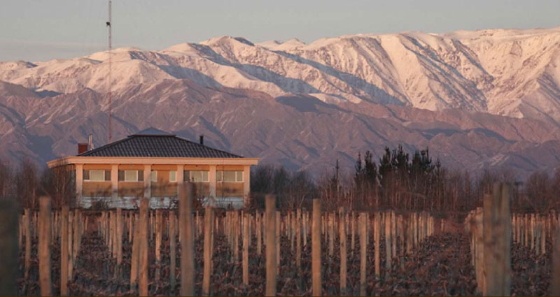 Bed and breakfast in Argentina - Mendoza - Valle de Uco - Inn 262