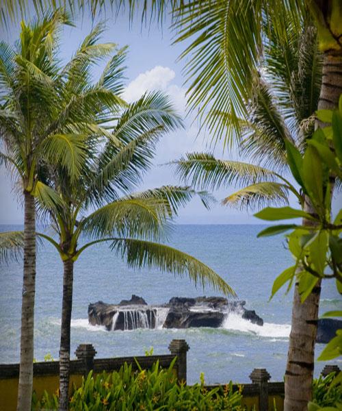 Villa vacacional en alquiler en Bali - Canggu - Cemagi - Villa 230 - 26
