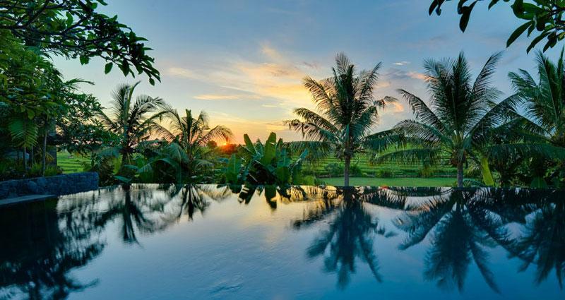 Villa vacacional en alquiler en Bali - Canggu - Canggu - Villa 236 - 20