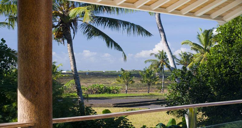 Villa vacacional en alquiler en Bali - Canggu - Canggu - Villa 241 - 14
