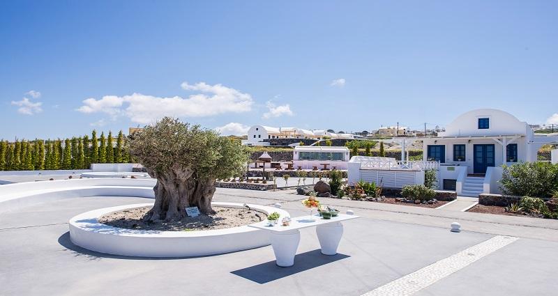 Bed and breakfast in Greece - Santorini - Santorini - Inn 429 - 5