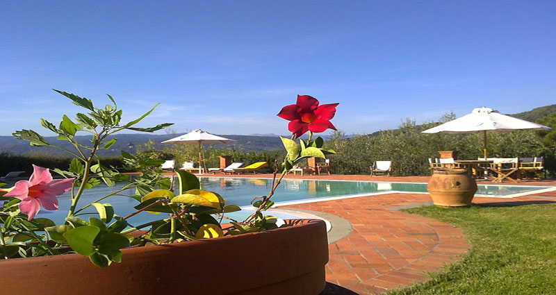Bed and breakfast in Italy - Tuscany - Pistoia - Inn 325