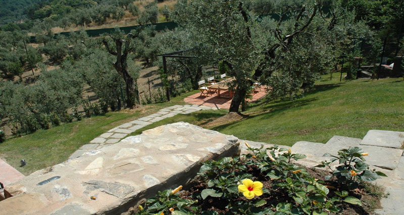 Bed and breakfast in Italy - Tuscany - Pistoia - Inn 326 - 39