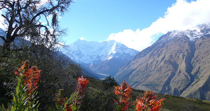 Bed and breakfast in Peru - Cusco - Machu Picchu - Inn 275 - 3