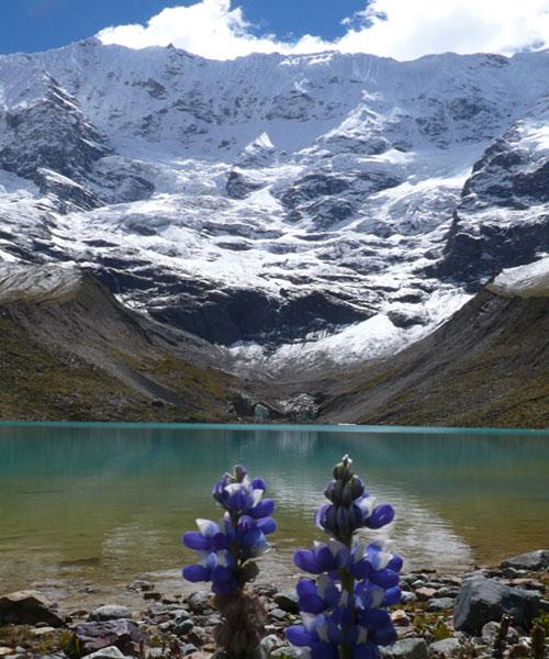 Bed and breakfast in Peru - Cusco - Machu Picchu - Inn 275 - 5