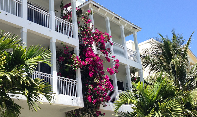 Bed and breakfast in USA - Florida - Hollywood Beach - Inn 217 - 28
