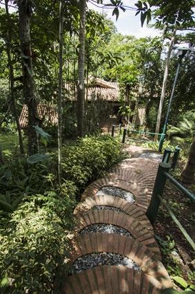Bed and breakfast in Venezuela - Miranda state - El cedrito - Inn 486 - 28